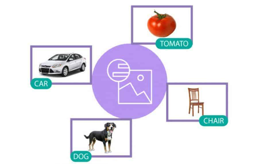 Watson Image Recognition