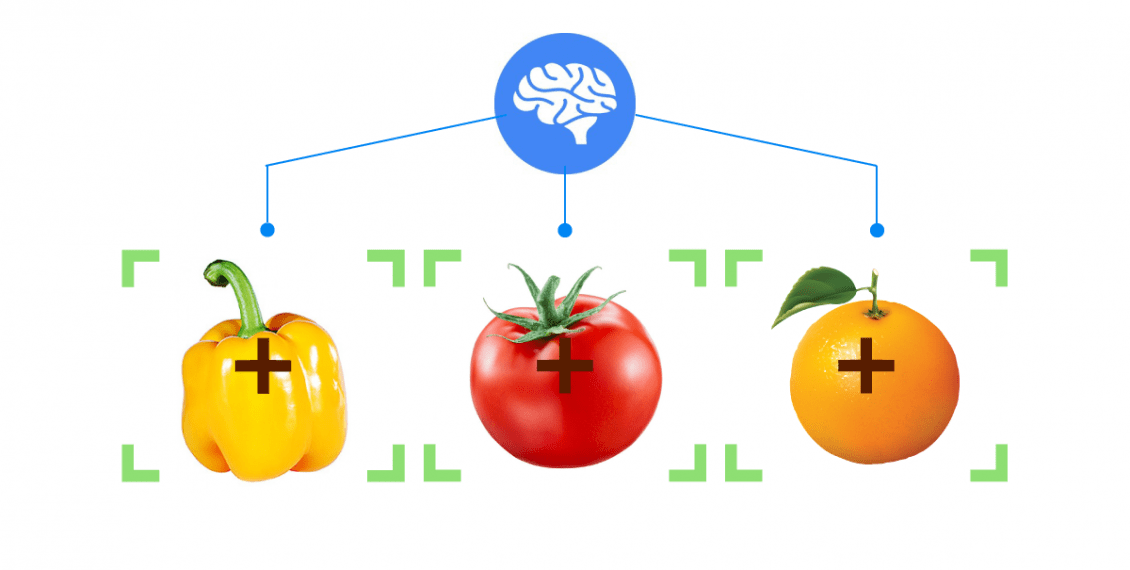 Machine Learning in Automated Food Quality Inspection